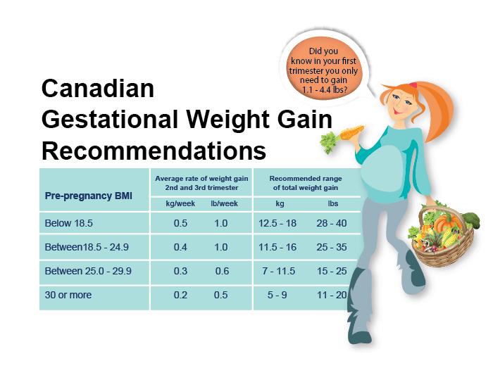 Pregnancy Weight Gain Chart Erkalnathandedecker