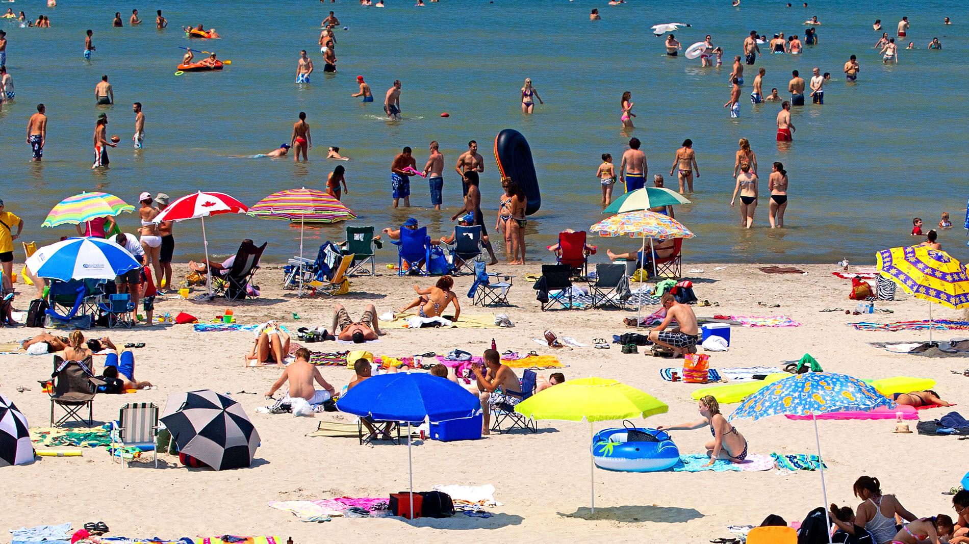 Banner image - beach